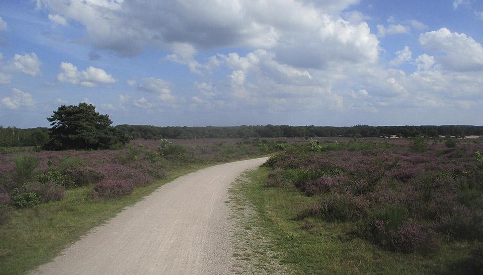 Herdersweg-7-4